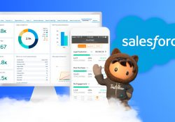 Best-Features-Of-Salesforce-CRM-You-Should-Know-About