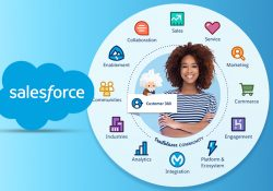 fexle---How-To-Use-Salesforce-To-Get-A-360-degree-View-Of-Your-Customer