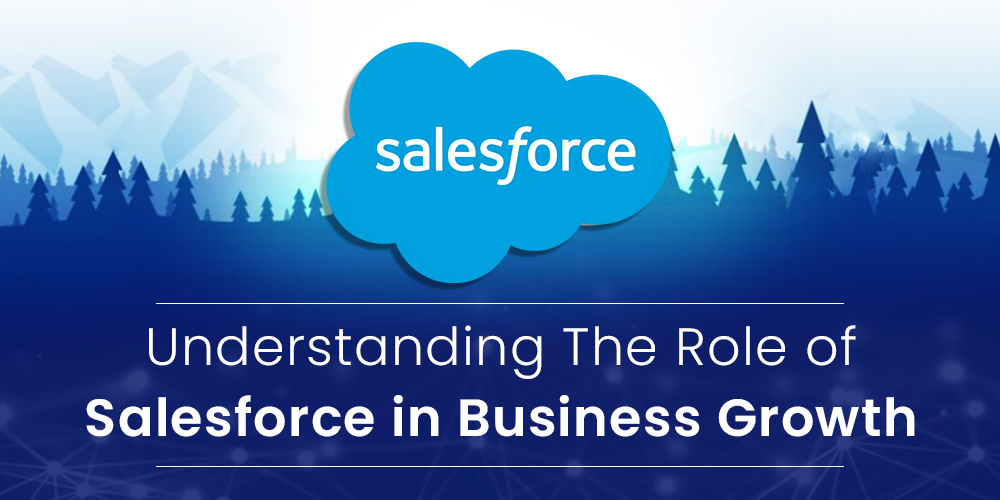 understanding the role of salesforce in business growth