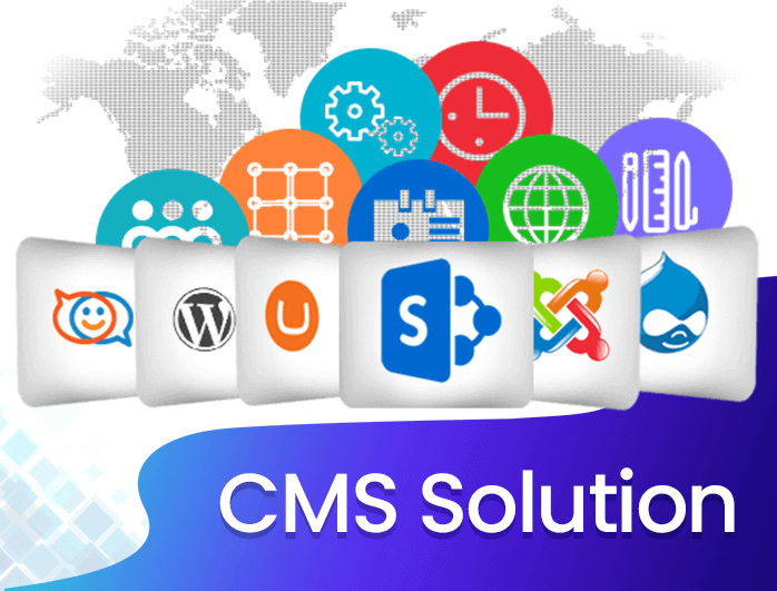 cms solution provider in india and usa