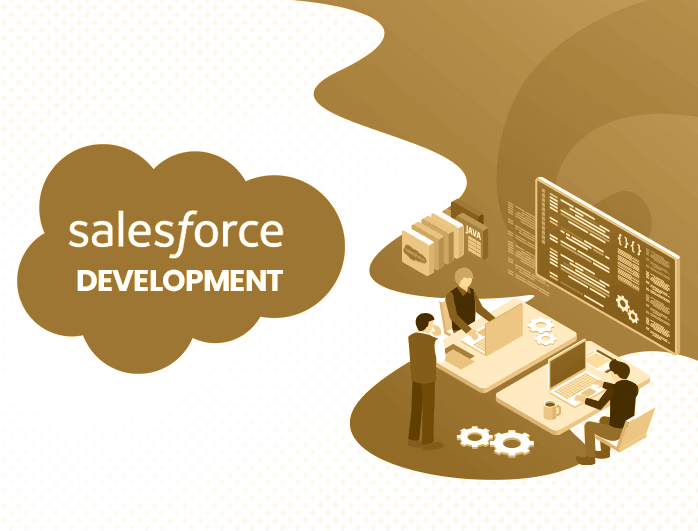 Salesforce Development Solutions