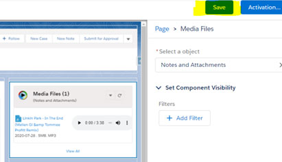 Viewing The Media File Attachments in Records